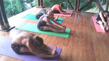 A picture of a Kriya Yoga Asana class