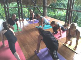 A picture of a Kriya Yoga Asana Class in Costa Rica